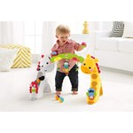 Fisher Price Babygym, Newborn, To Toddler Gym