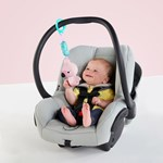 Bright Starts Chime Along Friends™ Flamingo On-the-go Legetøj